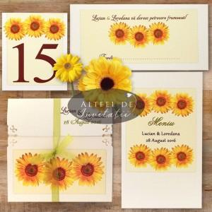 Set complet Floarea soarelui