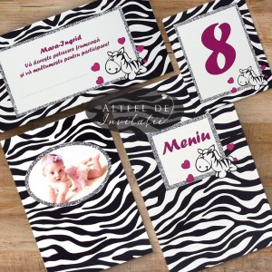 Set complet papetarie botez Zebra