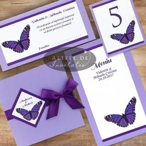 Set complet papetarie Fluture