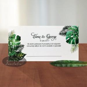 Place card Padure tropicala