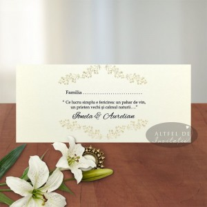 Place card Serenitate transparenta carton special